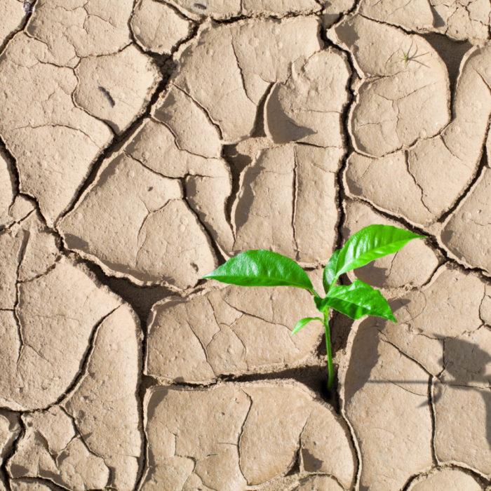 企業再生の持つ意味とは?実行のステップとポイントを解説