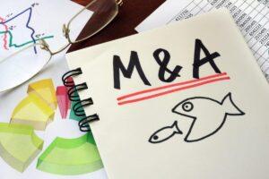 M&Aにおけるストックオプションの取り扱い
